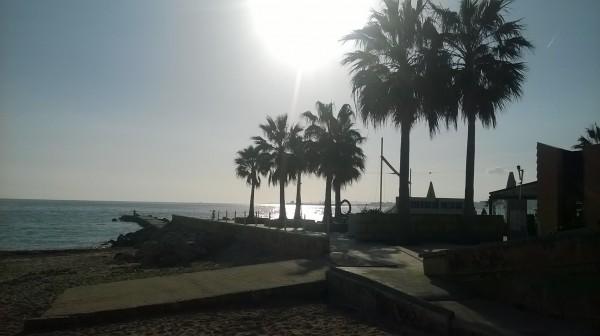 Procházka po Palmě: fotky
